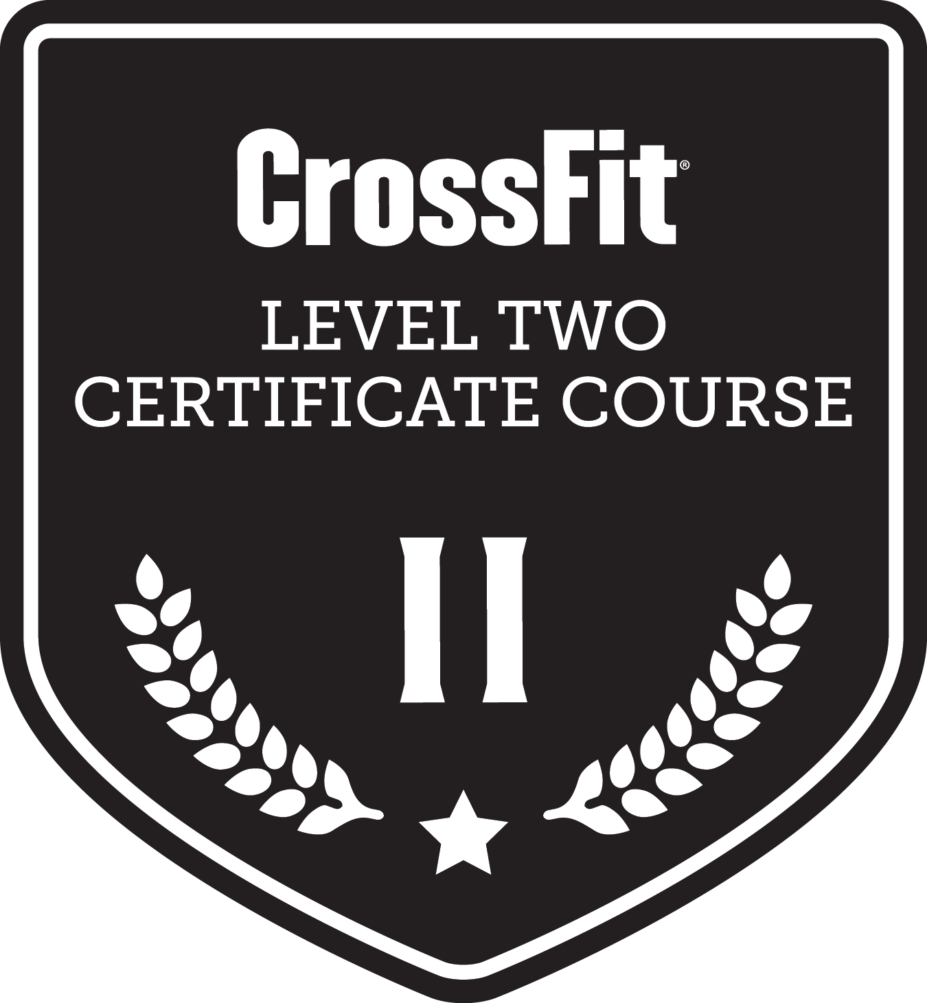 Crossfit Level two Logo